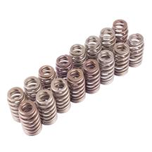 Mustang Ford Racing Boss 302R Valve Springs (11-14)